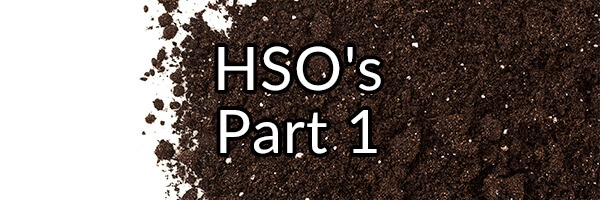 "My Stance on Hemostatic Soil Organism (HSO) ""Probiotic"" Supplements"