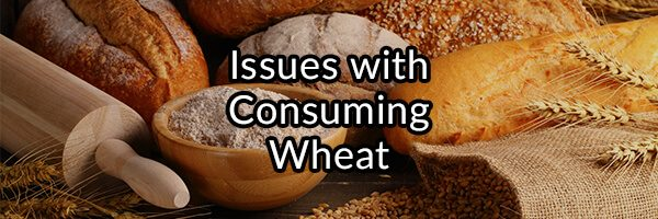 Celiac Disease, Is the Ingestion of Gluten the Only Cause?