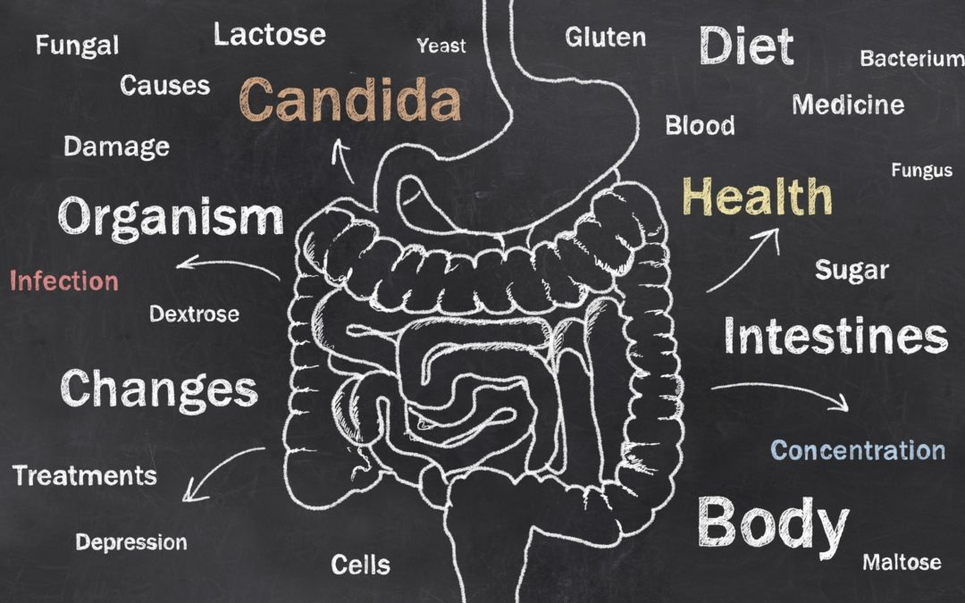 Candida Dysbiosis, Are You Suffering from It and What to Do About It