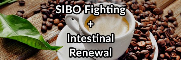 SIBO Fighting + Intestinal Renewal - Iced Bulletproof® Coffee Recipes