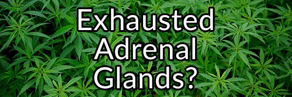Four Substances That Might Hinder Your Adrenal Function