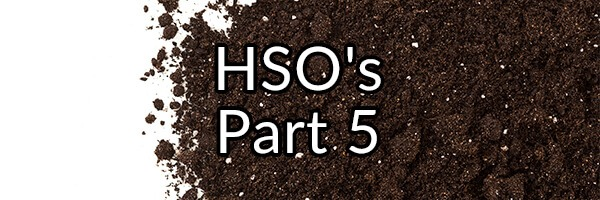 Did Our Ancestors Gorge Themselves on Dirt and Ingest HSO's Regularly?