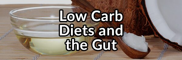 Low Carb Diets and the Gut