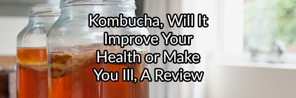 Kombucha, Will It Improve Your Health or Make You Ill, A Review