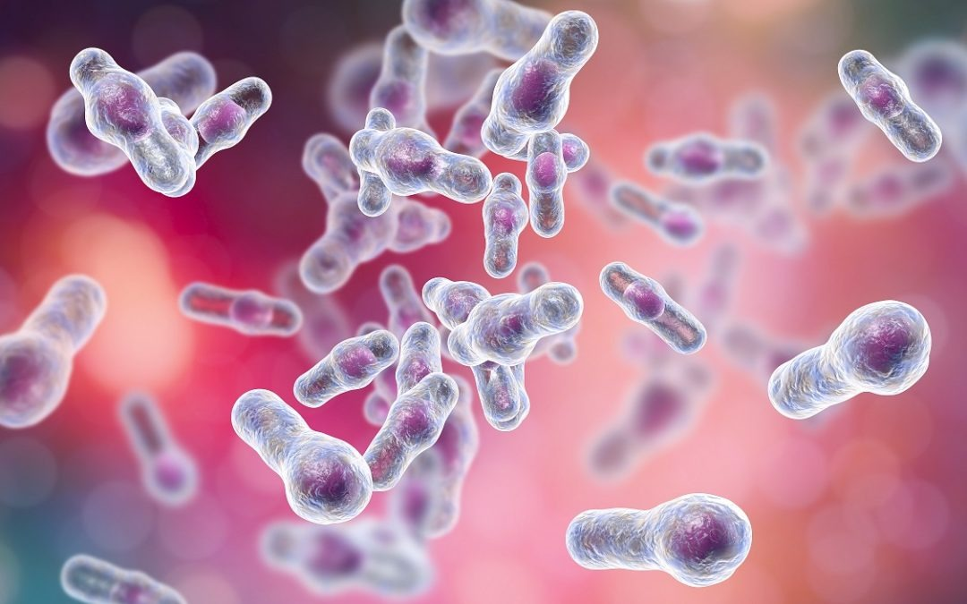 Clostridioides Difficile (C. difficile) Dysbiosis and How to Relieve It